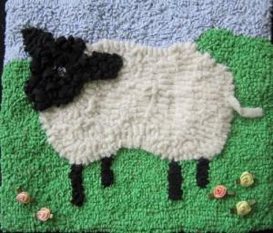 sheep16